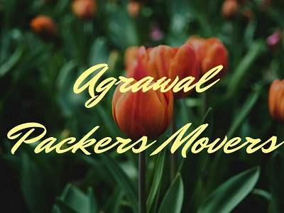 Agrawal Packers movers