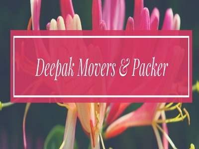 dee amritsar packers and movers