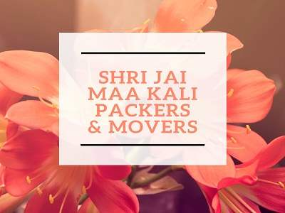 shrijai bareilly packers and movers
