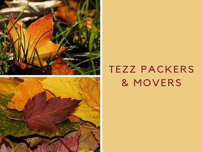 Tezz Packer & Movers