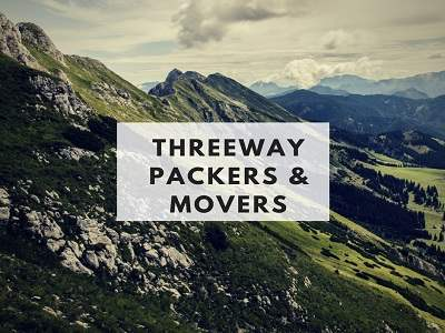 three gur packers and movers