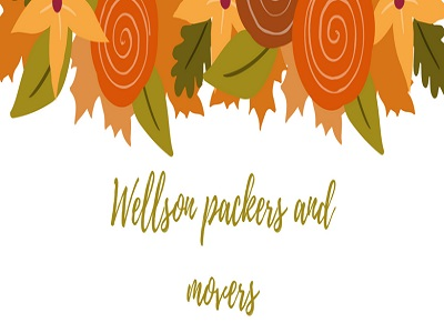 Wellson packers and movers